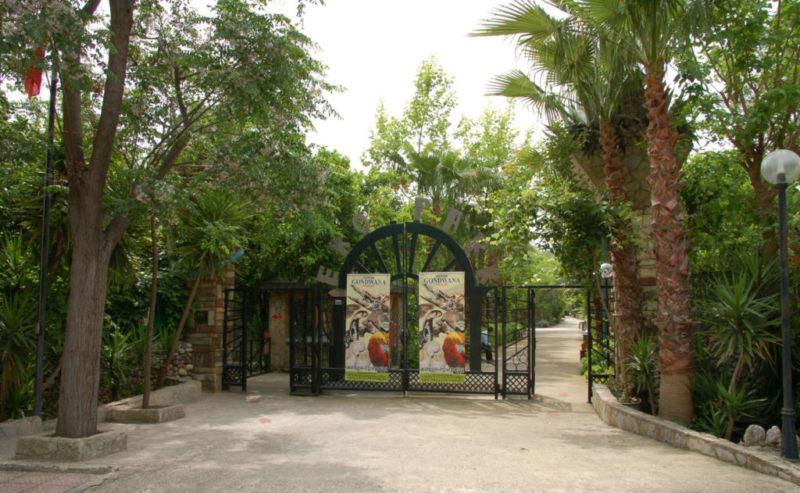 Эко парк в Текирова