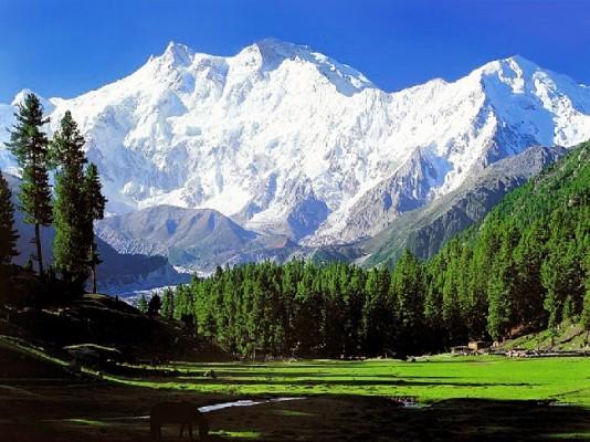Горы и равнины Пакистана